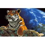 Схема для вышивки бисером «Амурский тигр.Спасем планету»