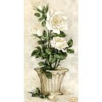 """Схема для вышивки бисером """"Белые розы"""""""